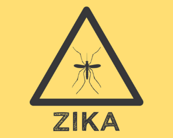 Zika Virus Can Cause Birth Defects; Here's What You Need to Know